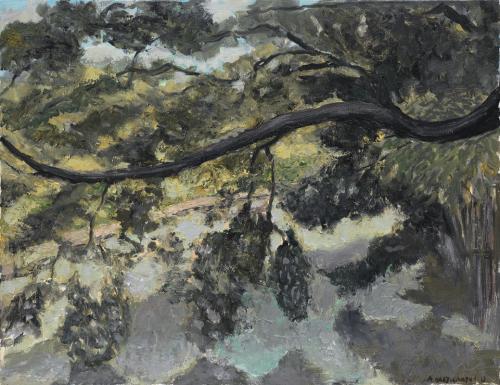 Albert Hadjiganev Chene en Chine 65x47
