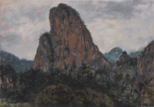 Jean-Daniel Bouvard Le rocher Shiwei 45x65